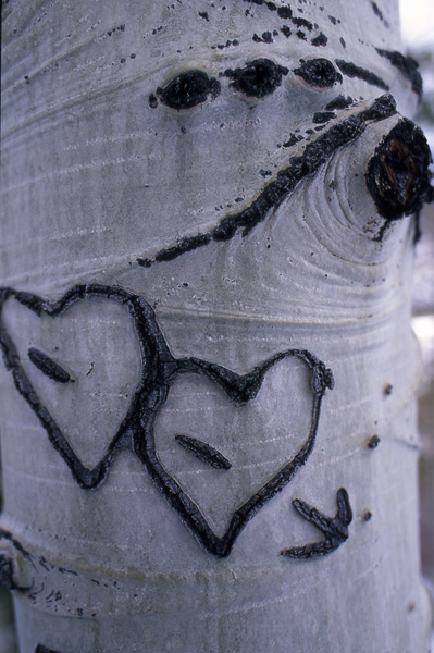 doublke heart tattoos